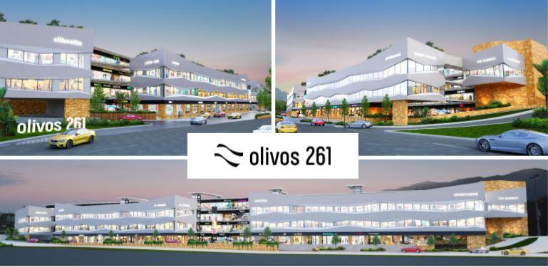 Plaza Olivos 261 Carretera Nacional Sur Monterrey Locales En Venta Comerciales