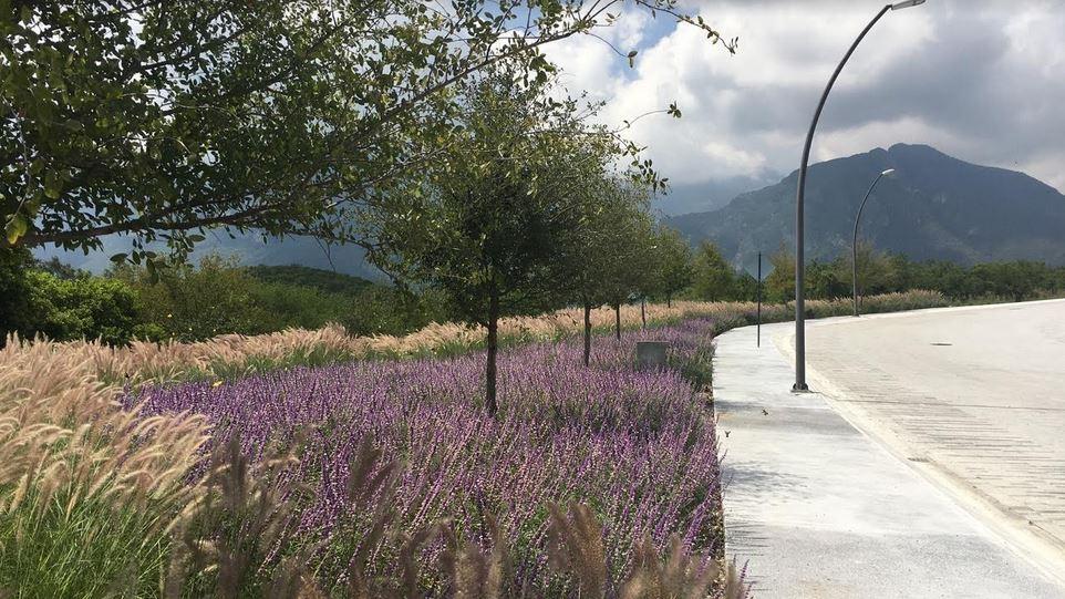 Terrenos Carretera Nacional Ébanos Residencial Monterrey Nuevo León Áreas Verdes